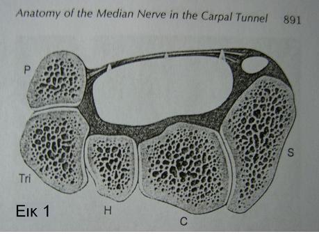 Το σύνδρομο Καρπιαίου Σωλήνα και η ανοικτή & ενδοσκοπική διάνοιξη του καρπιαίου συνδέσμου